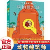 魔法放大镜动物建筑师6-9-12岁少儿科普绘本老师课外亲子阅读书籍探索奇妙的动物王国海洋世界森林动物童趣出版 97871