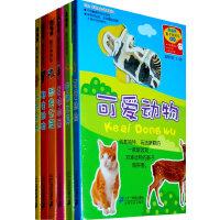 南极熊 影子拼拼乐(全6册)