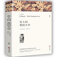 在人间我的大学书初中生原著正版无删减 高尔基著 中小学生必读课外小说经典文学世界名著中国儿童文学 高尔基三部曲