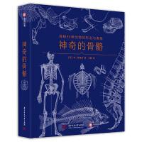 神奇的骨骼:探秘96�N�游锏男�B�c�W秘