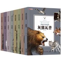 正版8册 西顿野生动物故事集 小学生课外阅读书籍四五六年级 野马飞毛腿儿童读物6-8-9-12-15岁沈石溪推荐西顿动