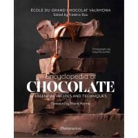 正版 Encyclopedia of Chocolate: Essential Recipes and Techniqu