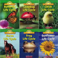 英文原版 Science Vocabulary Readers L1 Life Cycles 6本动物的生命周期全套儿