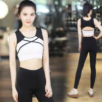 瑜伽服套装专业时尚健身服女紧身显瘦运动跑步服