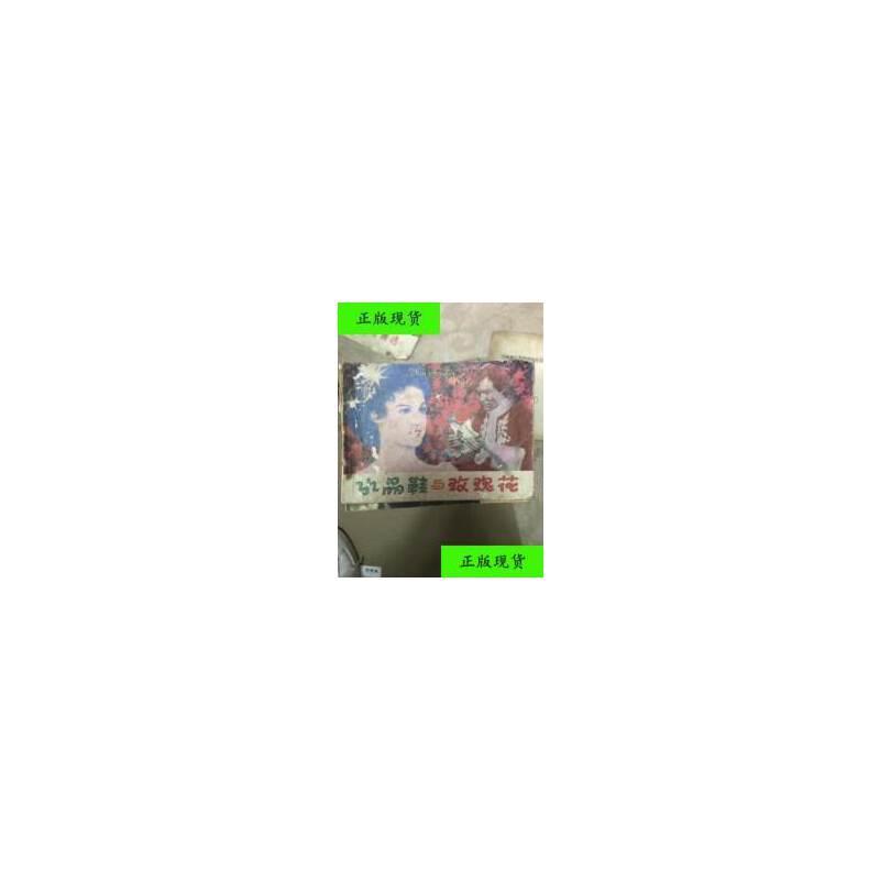 【二手旧书9成新】水晶鞋与玫瑰花 /吕文霖摄 天津人民美术出版社 【正版现货,请注意售价定价】