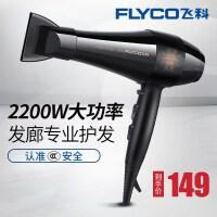 飞科(FLYCO)发廊专业电吹风FH6105 2200W大功率6档负离子功能理发店家用 吹风机吹风筒