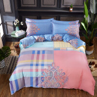 被套四件套纯棉全棉加厚网红被罩双人床单床笠1.8米2床上用品 1.8床笠款 被套2.2x2.4米