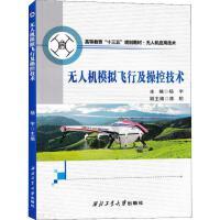 无人机模拟飞行及操控技术 杨宇 著