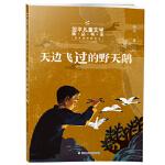 翌平儿童文学精品书系:天边飞过的野天鹅 翌平 9787534292705