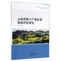 云南省林下产业扶贫绩效评价研究/绿色经济与绿色发展经典系列丛书