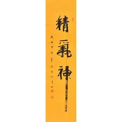 汇川精气神GSF0859