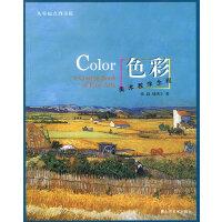 美术教学全程――色彩