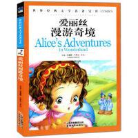 爱丽丝漫游记奇境
