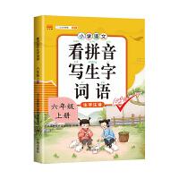 看拼音写词语六年级上册人教部编版小学生同步专项训练生字注音组词造句练习本