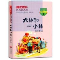 大林和小林 正版现货张天翼 9787222149946 大秦书店