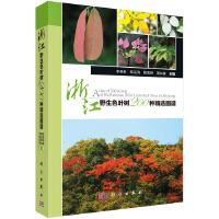 浙江野生色叶树200种精选图谱