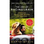 我在雨中等你 英文原版 The Art of Racing in the Rain MTT 加思・斯坦作品 同名电影小