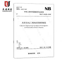 光伏发电工程地质勘察规范(NBT 10100-2018)