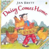 Daisy Comes Home黛西回家了(Jan Brett绘本)ISBN9780142402702