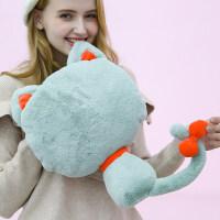 【新品】热水袋 充电暖手宝 女��宝宝注水毛绒可爱猫咪暖水袋萌萌电暖宝