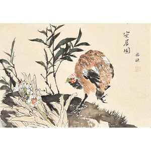 当代著名画家杨迪42 X 28CM花鸟画gh03893