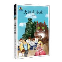 小学生阅读名家-大林和小林语文阅读丛书 纯手绘彩色插图