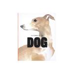 现货包邮 英文原版 The Book of the Dog 狗之书 向人类最好的朋友致敬 狗狗犬类的插画集 狗狗爱好者