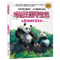 疯狂的十万个为什么寻宝记大熊猫成长漫画版彩绘科普6-12岁