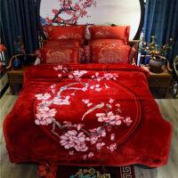 进口品质毛毯被子双层加厚云毯柔保暖冬季结婚珊瑚绒双人床单W 200cmx230cm【】 浅紫色 寒烟翠红9斤