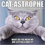 【预订】Cat-Astrophe 2020 Wall Calendar 9781549205767