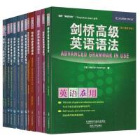 义博!英语在用 English in Use 剑桥语法+词汇 剑桥英语语法初级中级高级+初级中级语法练习 全套13本