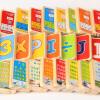 丹妮奇特 榉木双面认字识字多米诺骨牌积木玩具幼儿童益智力宝宝小孩子数字早教木制男孩女孩