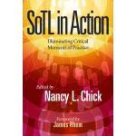 【预订】SoTL in Action 9781620366936
