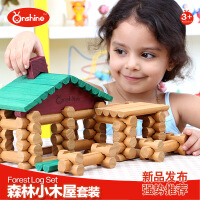 Onshine木制玩具 儿童创意建筑百变积木小木屋套装 益智玩具170片 周岁生日圣诞节新年六一儿童节礼物