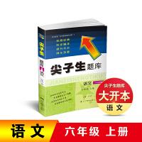 2019秋尖子生题库六年级语文上册人教部编版RJ版
