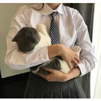 幼稚园大儿童复古ins百搭日系条纹英伦学院印花小领带