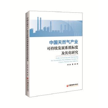 中国天然气产业可持续发展系统标度及优化研究