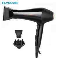 飞科(FLYCO)电吹风FH6101 吹风机2200W大功率 吹风筒 发廊家用负离子冷热风 理发店电吹风机