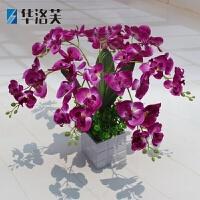 仿真蝴蝶兰 假花盆栽摆件茶几餐桌摆设 绢花塑料花艺 J 如图