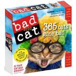 英文原版 坏猫咪2020年日历 每天一页 萌宠摄影 进口台历 Bad Cat Page-A-Day Calendar