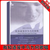 正版图书 我知道笼中鸟为何歌唱 (美)玛雅.安吉洛 著作 于霄,王笑红 译者 现代/当代文学文学 上