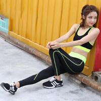 高弹力速干紧身健身裤跑步裤运动裤女长裤秋小脚 瑜伽训练压缩裤