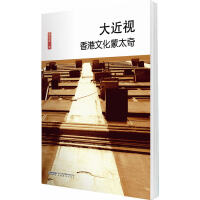 厘米书系 大近视――袁兆昌的文化蒙太奇