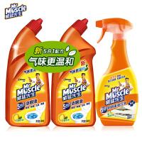 威猛先生洁厕液600g*2卫生间马桶清洁剂洁送厨房重油污油烟机清洗