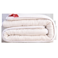 新疆手工棉被棉絮纯棉花被芯垫被单人床垫被子棉胎被褥子春秋冬被