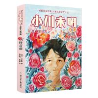 野蔷薇 小川未明儿童文学 日本童话之父 近代儿童文学先驱 四五六年级小学生课外阅读故事书 7-10岁孩子童话故事 正版