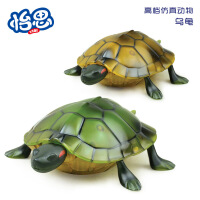 益智早教仿真电动遥控乌龟 高仿逼真玩具