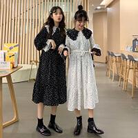 配大衣的长裙子春装2019新款韩版蕾丝娃娃领打底裙很仙的连衣裙女