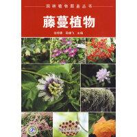 园林植物图鉴丛书 藤蔓植物
