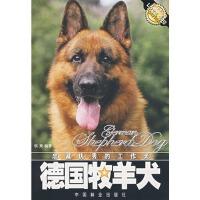 【正版直发】忠诚优秀的工作犬:德国牧羊犬 侯爽 编著 中国林业出版